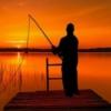 広島近郊の釣り情報 記事一覧