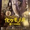化けモノ展が広島マリーナホップのマリホ水族館で開催!